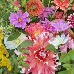Vårweekend – skapa med sommarblommor